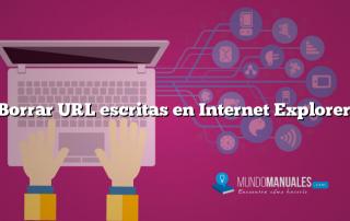 Borrar URL escritas en Internet Explorer