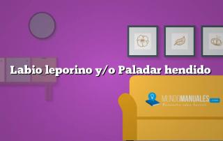Labio leporino y/o Paladar hendido